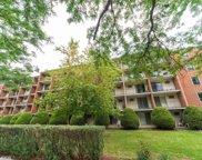 255 S West Avenue Unit #209, Elmhurst image