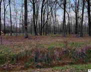Lot 30 Carey Smith Road, Mangham image