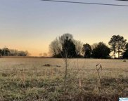 4616 County Road 316, Trinity image