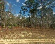 7198 N Henderson Way, Citrus Springs image