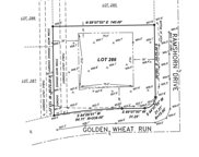 Golden Wheat Run, Windsor image