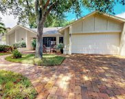 15878 Gleneagle  Court, Fort Myers image