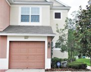 26527 Castleview Way, Wesley Chapel image