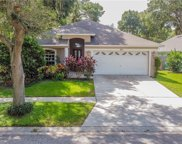 511 Valencia Park Drive, Seffner image