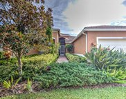 15722 Aurora Lake Circle, Wimauma image