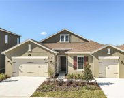 17922 Woodland View Drive, Lutz image