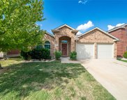 427 Coolidge Lane, Lavon image