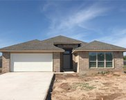 529 Laleh Court, Norman image