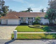 17910 Clear Lake Drive, Lutz image