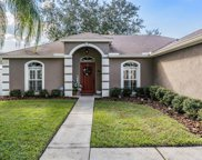 14833 Redcliff Drive, Tampa image