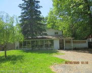 45081 WILLIS, Sumpter Twp image