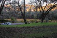 0  Jacobs Creek, Lotus image