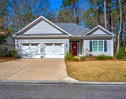 59 Grey Fox Loop, Pawleys Island image