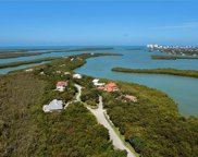 1126 Blue Hill Creek Dr, Marco Island image