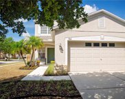 702 Periwinkle Pointe Place, Seffner image