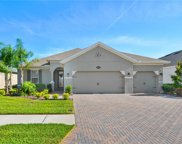 18220 Roseate Drive, Lutz image