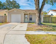 11117 Cherrywood Lane, Riverview image