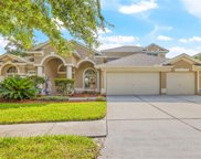 19210 Inlet Cove Court, Lutz image