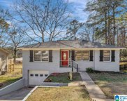 1309 Laurence St, Irondale image