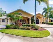6911 Livingston Woods Ln, Naples image