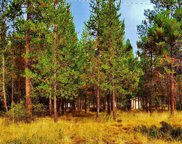 56214 Black Duck  Road, Bend image