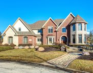 10900 Crystal Meadow Court, Orland Park image