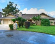 2541 Fox Squirrel Court, Apopka image