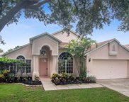 10334 Lightner Bridge Drive, Tampa image