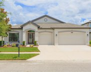 8144 Mallow Mirror Lane, Land O' Lakes image