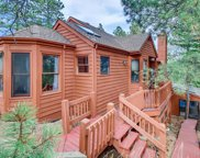 23599 Shingle Creek Road, Golden image
