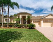 17321 Emerald Chase Drive, Tampa image