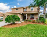 18410 Cypress Bay Parkway, Land O' Lakes image