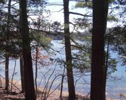 Lot 105 E Sanford Lake Drive, Lake Ann image