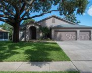 1777 Pipers Meadow Drive, Palm Harbor image