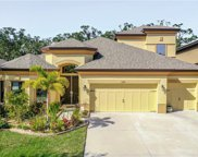 13715 Moonstone Canyon Drive, Riverview image