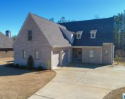 168 Willow Branch Ln, Chelsea image