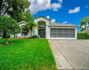 10321 Ravines Drive, New Port Richey image