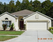 10926 May Apple Court, Land O' Lakes image