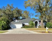 9902 Country Carriage Circle, Riverview image