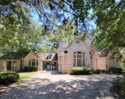 38 E Wedgemere Circle, The Woodlands image