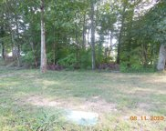 Lot 13 County Road 142, Riceveille image