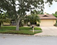2969 Pinewood Run, Palm Harbor image