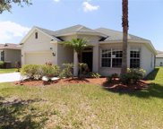 11803 Tangle Weed Way, Gibsonton image