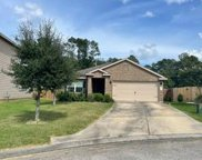 313 Crooked Pine Court, Conroe image