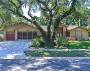 8957 Crescent Forest Boulevard, New Port Richey image