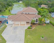 7045 Clearwater Drive, Spring Hill image