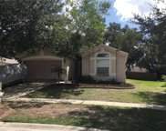 4705 Bear Claw Court, Valrico image