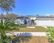 11315 Andy Drive, Riverview image