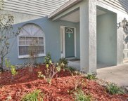4429 W Pintor Place, Tampa image