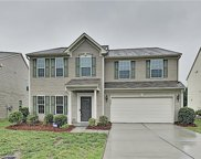 3521 Catherine Creek  Place, Davidson image